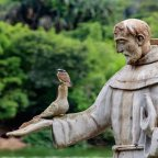 From St. Francis toward a Christian Ecotheology